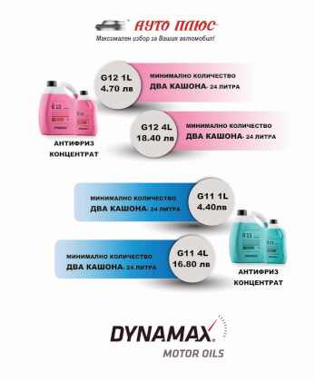 Dynamax Winter